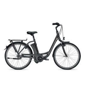 Vélo à Assistance Électrique Premium - RALEIGH